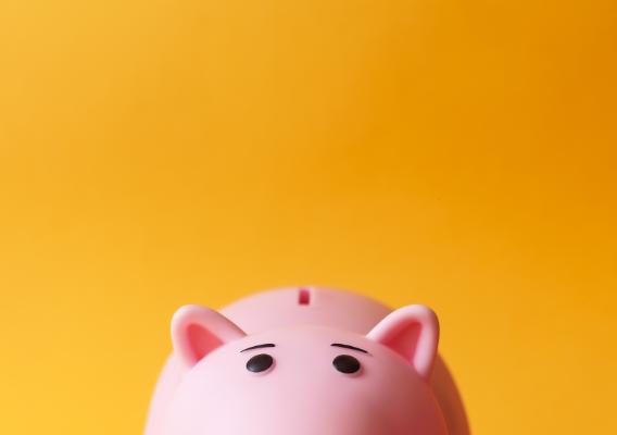 pink piggybank with an orange backdrop